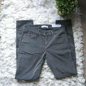 Loft velvet gray modern skinny pants.